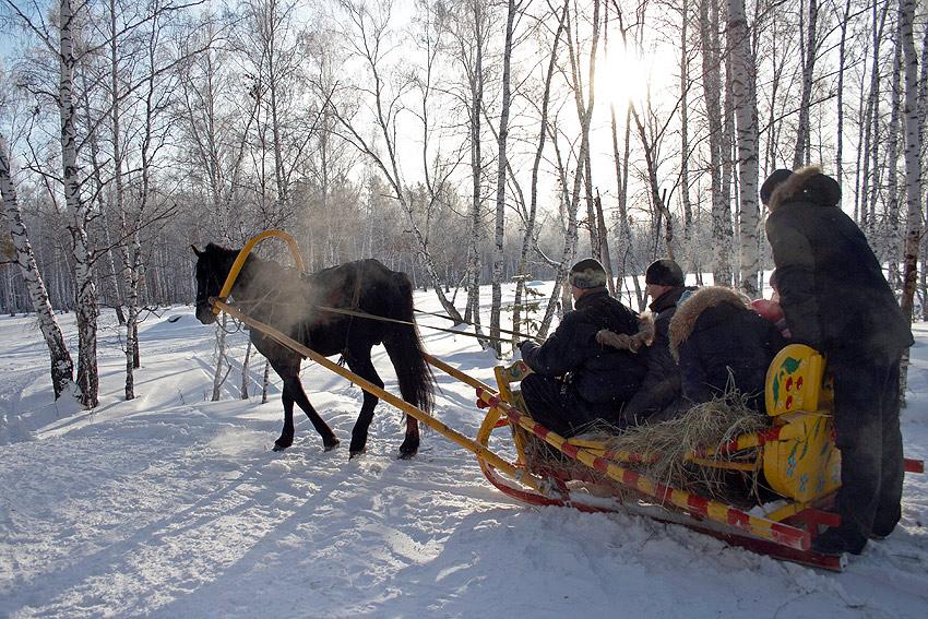 Лошади в Русском Доме