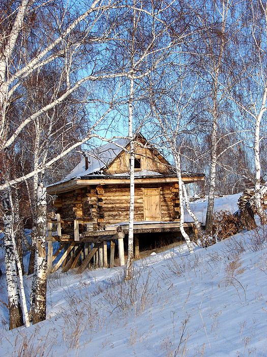 Домик Петровской Деревни