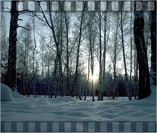 Отдых Новосибирск